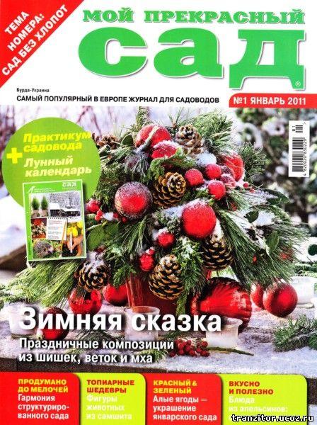 Мой прекрасный сад №1 (январь 2011)